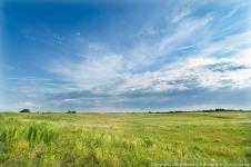 Sand prairie at The Nature Conservancy's Platte River Prairies, Nebraska.