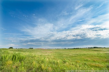 Sand prairie at The Nature Conservancy's Platte River Prairies, Nebraska.